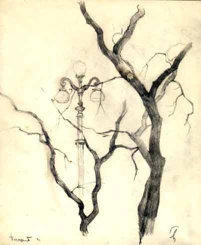 """художник Мясников Игорь  """"Зарисовка дерева """" бумага, карандаш."""